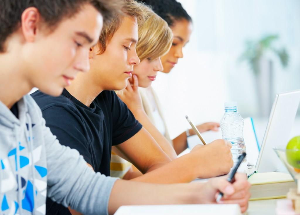 Bosna Hersek Eğitim Danışmanlığı Şırnak